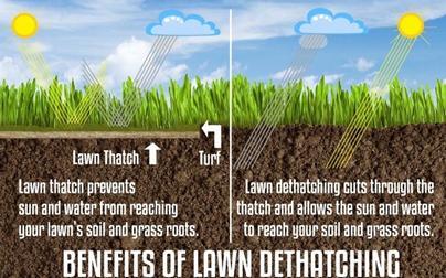 Photo of Benefits of Detaching