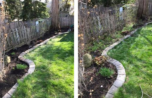 Toronto Lawn Care Before and After Photo