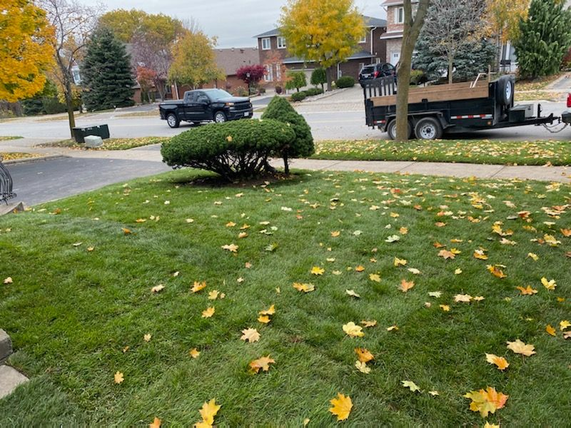 ISR Gardening Fall Cleaning