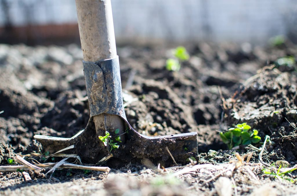 Professional and Reliable Overseeding Service by ISR Gardening Services Toronto